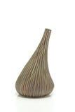 花的一个棕色花瓶在白色背景 免版税库存图片