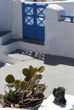 花的布置用一个仙人掌和一块火山的石头在传统希腊房子庭院里  免版税库存照片