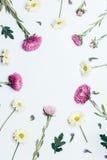 花的布置顶视图 免版税图库摄影