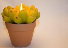 以花的形式蜡烛 免版税库存图片