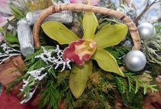 花的构成与一朵黄色兰花的 库存照片