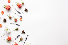 花的样式在白色背景顶视图嘲笑的 免版税图库摄影