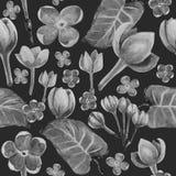 花的水彩black&white无缝的样式 向量例证
