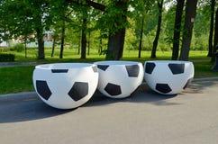 花的箱子以足球的形式 免版税库存图片
