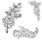 花的美好的夏天样式 从玫瑰的装饰在a 免版税库存照片