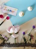 花的设施在蓝色黏土、蓝纸天空,寒风而不是云彩,太阳从橙色海盐和明信片的 库存照片