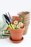 花盆和种子在袋子 免版税库存图片