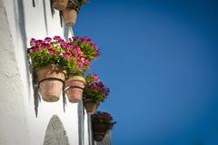 花盆和花在白色墙壁,老欧洲镇上 免版税库存图片