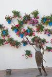 花盆墙壁在科多巴 免版税库存照片