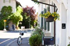 花盆装饰物 图库摄影