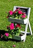 花盆 库存图片