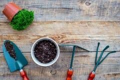 花种植 园艺工具和罐有土壤的在木背景顶视图copyspace 免版税库存照片