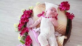花篮子的新出生的婴孩  股票录像