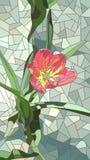 花红色郁金香的传染媒介例证 免版税库存照片