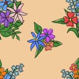 花纹花样明亮的花束  免版税图库摄影