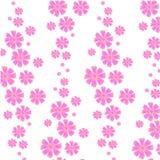 花纹花样:一cosme的桃红色花在白色背景的-美好轻拍印刷品 免版税库存照片