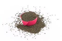 紫花罗勒种子,在桃红色纸杯的罗勒属canum Sims在白色 免版税库存照片
