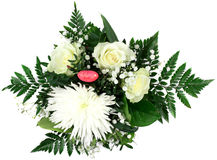 花美丽的花束在白色背景的 免版税图库摄影