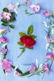 花美好的春天框架在蓝色背景的 免版税图库摄影