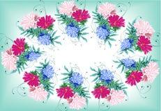 花翠菊缠绕绿色框架 库存照片