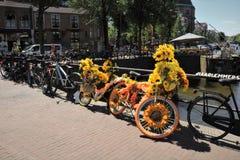 花自行车在阿姆斯特丹 免版税库存图片