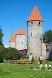 花节日在中世纪堡垒的脚的耸立 塔林 免版税图库摄影