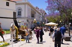 花节日在马德拉海岛上的 免版税库存照片