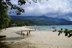 花花公子在Mahe,塞舌尔群岛西部的Vallon海滩  库存图片