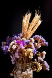 花花束与小尖峰的在黑暗的背景 免版税库存照片