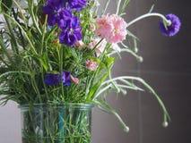 花花束在卫生间里 库存照片