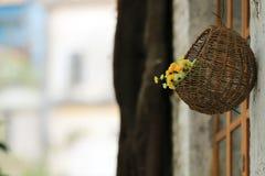 花花束在垂悬在墙壁上的篮子的 免版税库存照片