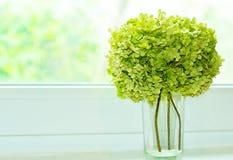 花花束在窗口的 免版税库存图片