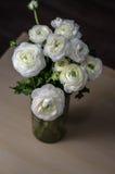 花花束白色毛茛毛茛属在玻璃花瓶的在木桌上 静物画,土气样式,黑暗的口气 免版税库存图片