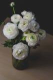花花束白色毛茛毛茛属花束在玻璃花瓶的在木桌上 静物画,土气样式,黑暗的口气 库存照片