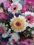 花花束 库存图片