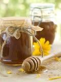 花蜂蜜 免版税库存图片