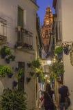 花街道在科多巴 免版税库存图片