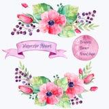 花被设置的向量 与叶子和花,画的水彩的五颜六色的花卉收藏