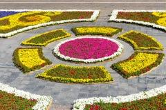 花设计在一个中心广场在瓦莱塔,马耳他 免版税库存照片