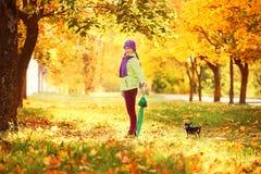 花费与秋叶的时间的十几岁的女孩 秋叶的女孩在新鲜空气的公园 免版税库存照片