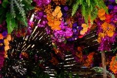 花隧道混杂的花的布置 五颜六色混杂 免版税库存照片
