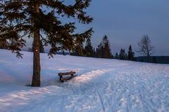 花雪时间冬天 图库摄影