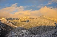 花马落矶山不列颠哥伦比亚省加拿大 库存图片