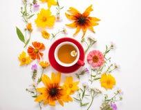 花,一个杯子用在白色背景的清凉茶 图库摄影