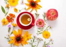 花,一个杯子用在白色背景的清凉茶 库存照片