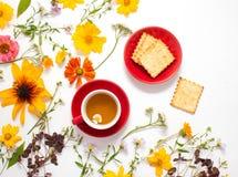 花,一个杯子用在白色背景的清凉茶 免版税库存图片
