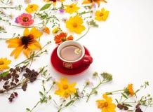 花,一个杯子用在白色背景的清凉茶 库存图片