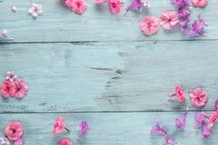 花,背景蓝色板框架  免版税库存图片