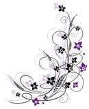 花,紫色 免版税库存图片