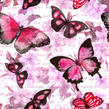 花,蝴蝶,手书面文本笔记 水彩 无缝的模式 库存图片